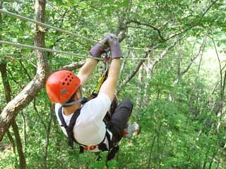 If You Want Some Excitement On Your Next Visit To The Smokies Try Hand At A Zip Line Tour AKA Canopy We Have All Seen It In Tree Tops