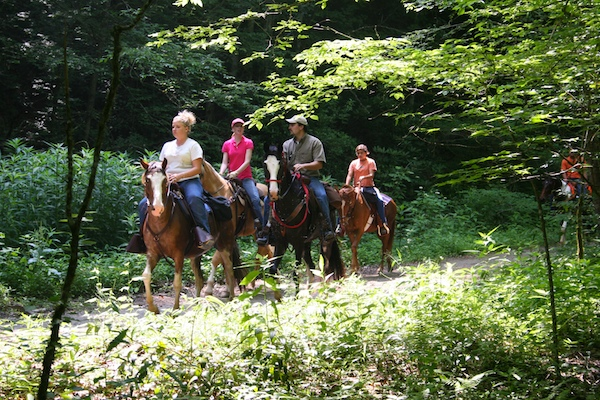 Smoky Mountain Horseback Riding